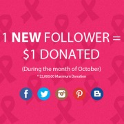 follower_donations_pink_pride
